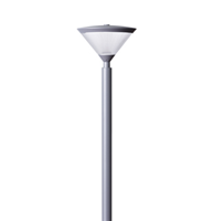 EPSYLON POLE TOP LIGHT